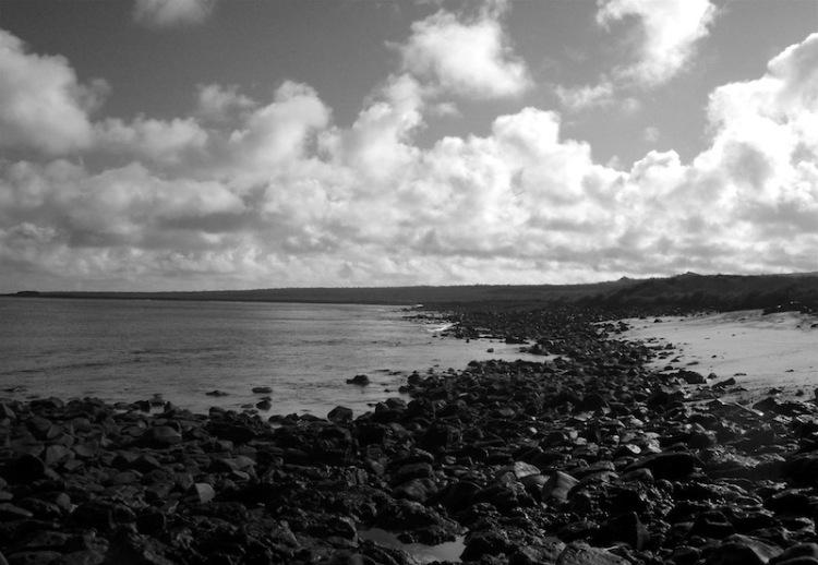 Shore meets ocean
